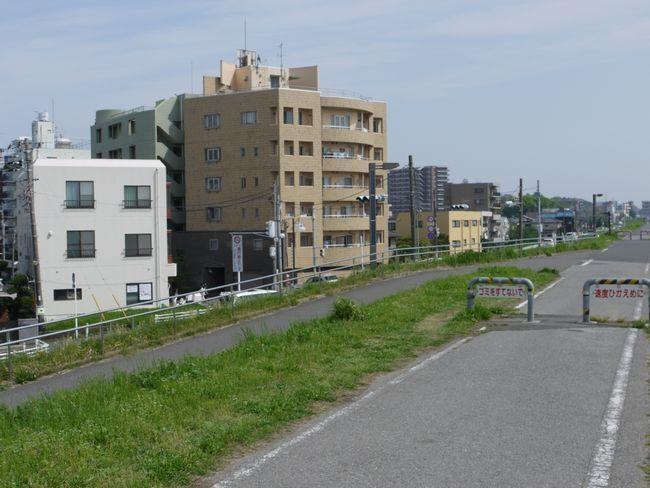 江戸川サイクリング 江戸川 旧三郷有料道路・葛飾橋間