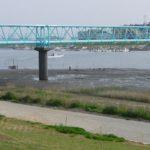 江戸川サイクリング 市川橋・東京湾間