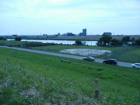 江戸川の市境を行く