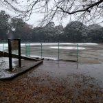 まだ11月なのに松戸で積雪
