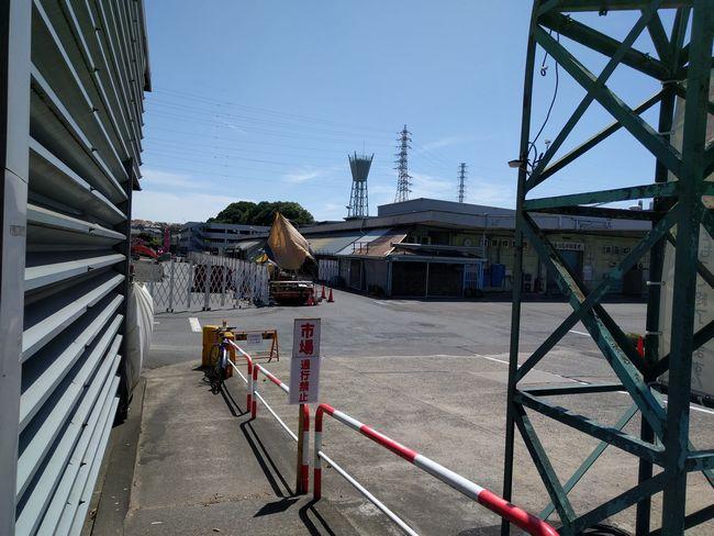 松戸北部市場