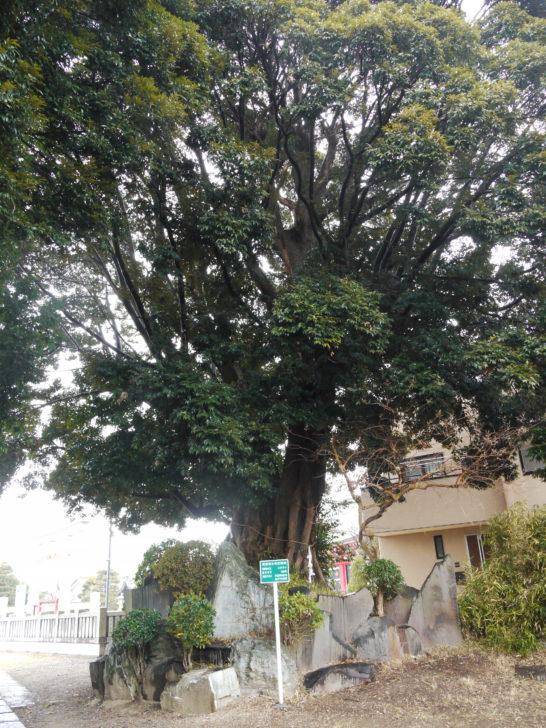 三日月神社(松戸市)