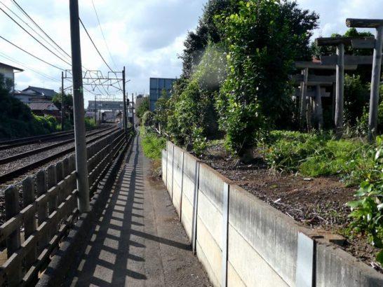 松戸新田稲荷神社(松戸市松戸新田)
